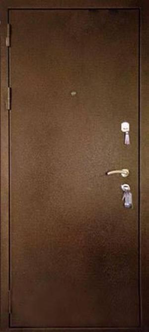 Дверь Аргус-9 с двумя листами стали