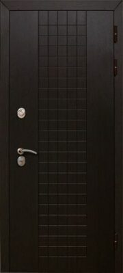 Дверь Аргус Гарант