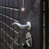Выбор-12 Премиум дизайн двери